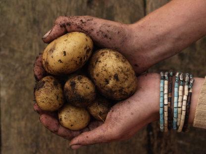 Lammas: UK's first planned EcoVillage - documentary